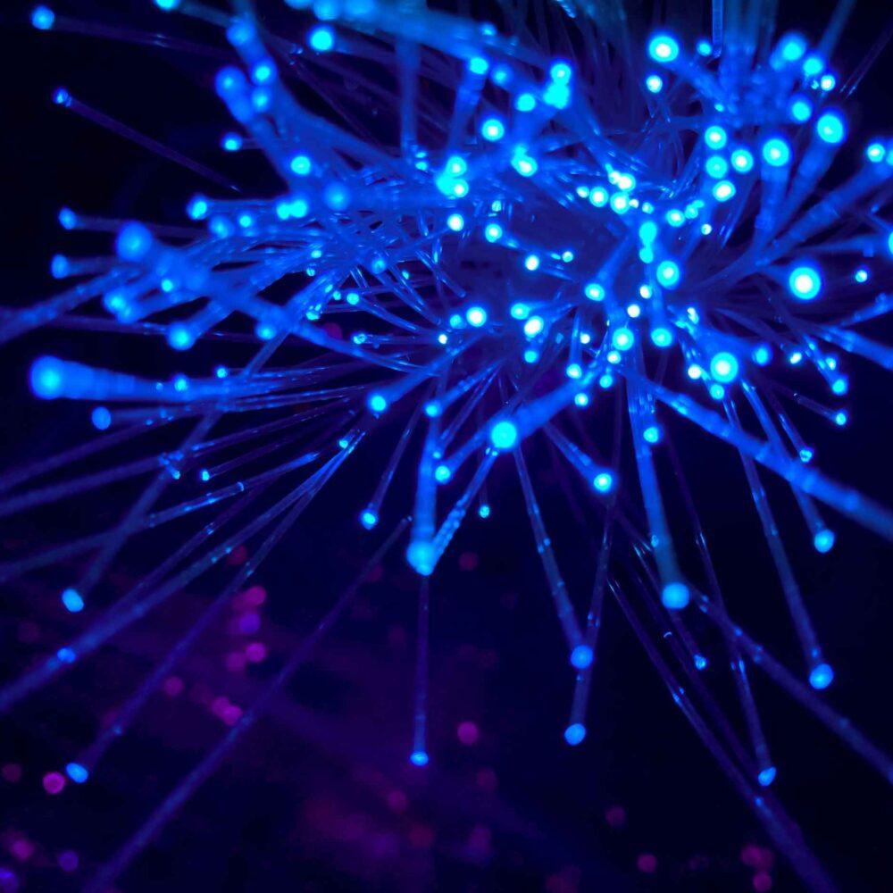 Glowing network lights